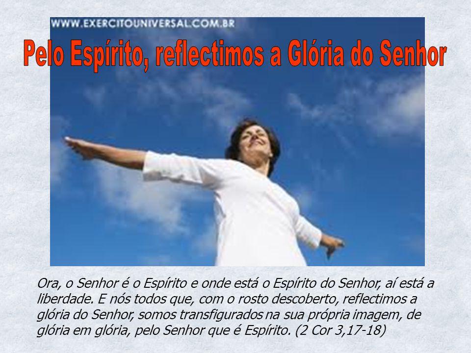 Pelo Espírito, reflectimos a Glória do Senhor