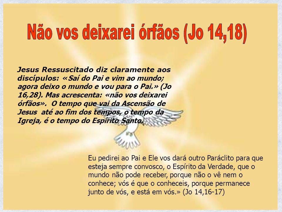 Não vos deixarei órfãos (Jo 14,18)