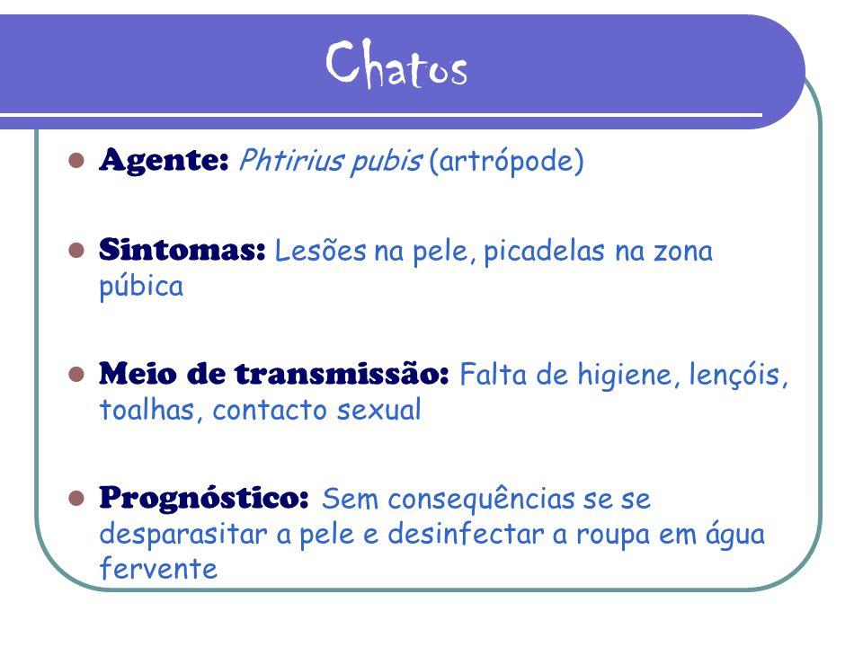 Chatos Agente: Phtirius pubis (artrópode)