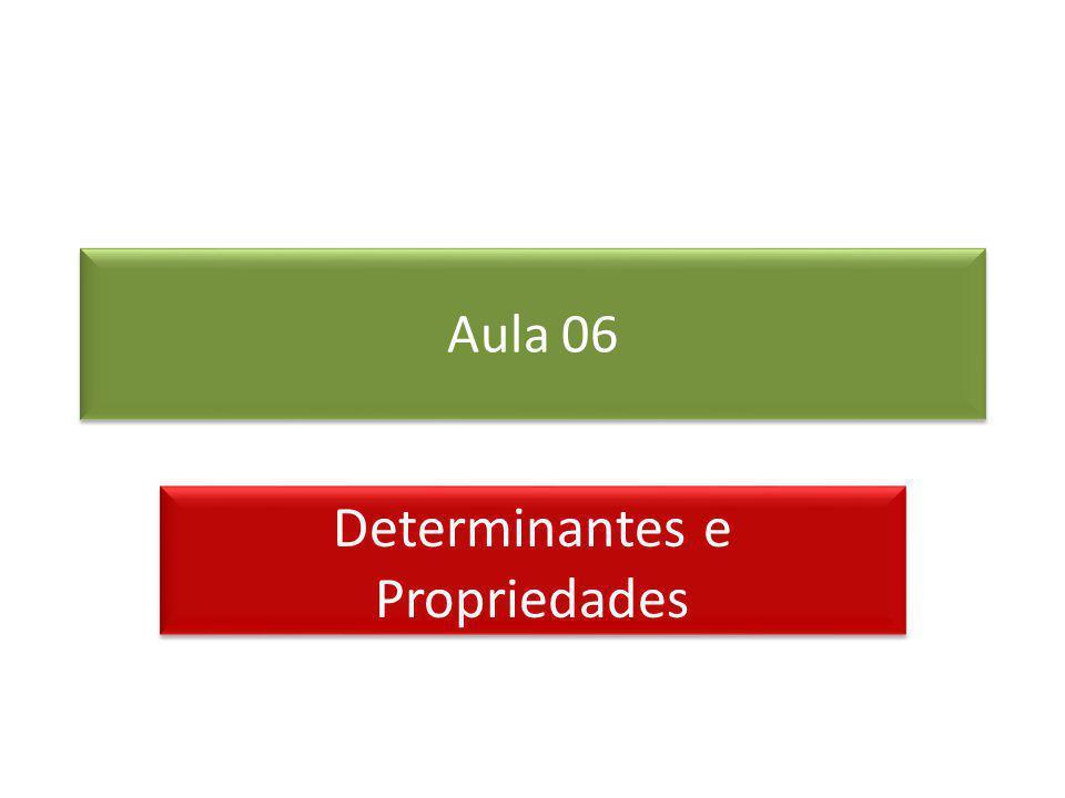 Determinantes e Propriedades