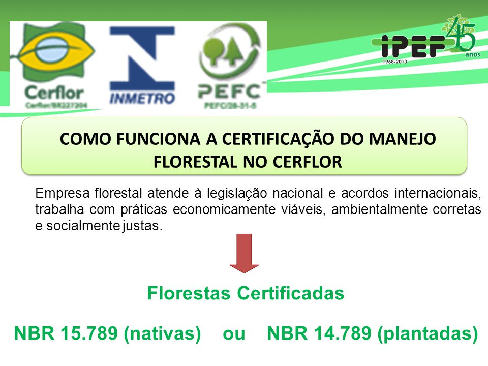 COMO FUNCIONA A CERTIFICAÇÃO DO MANEJO FLORESTAL NO CERFLOR