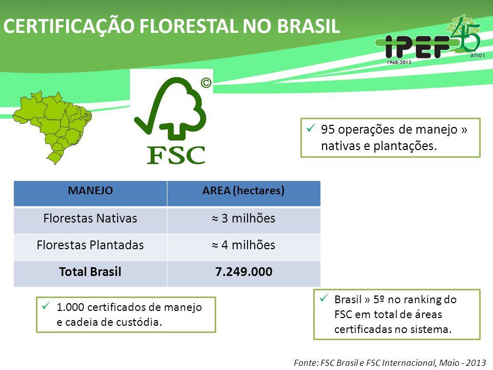 CERTIFICAÇÃO FLORESTAL NO BRASIL