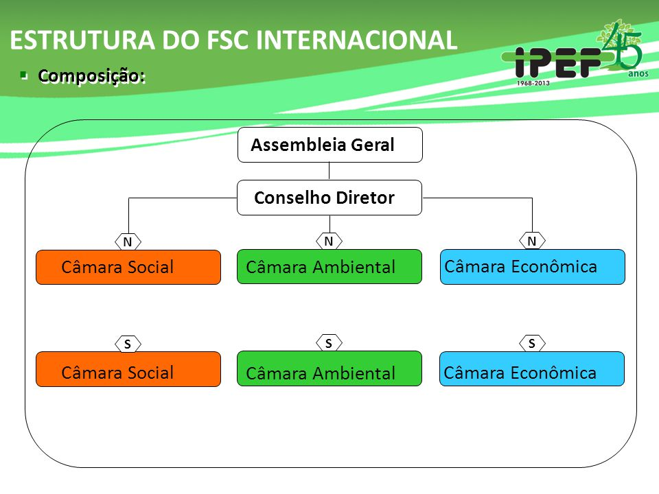 ESTRUTURA DO FSC INTERNACIONAL
