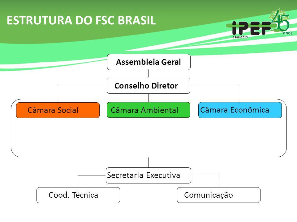 ESTRUTURA DO FSC BRASIL