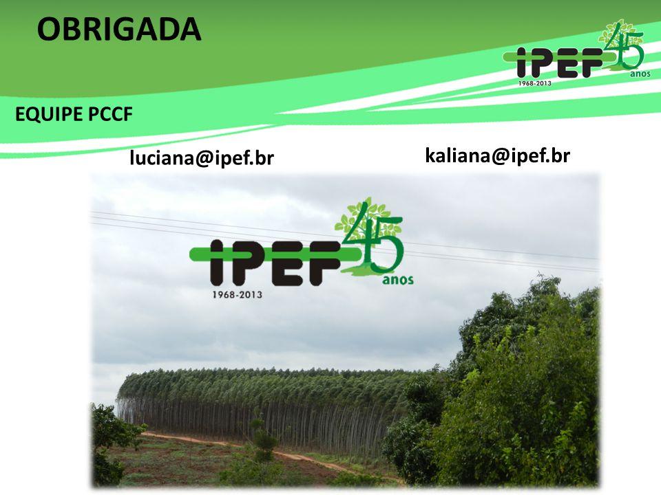 OBRIGADA EQUIPE PCCF luciana@ipef.br kaliana@ipef.br