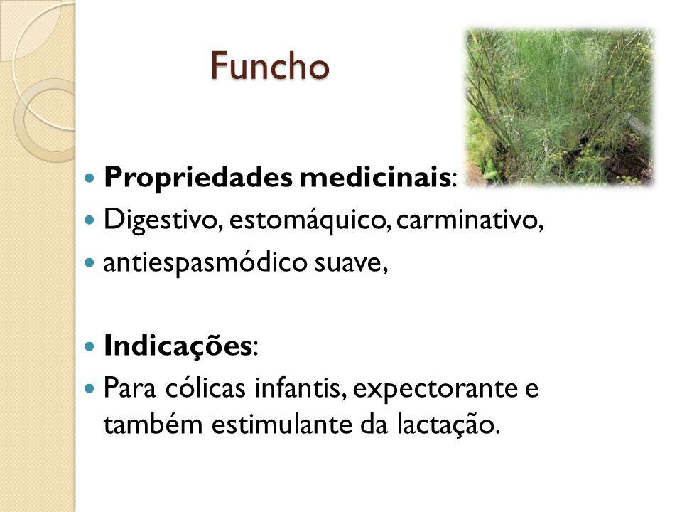 Funcho Propriedades medicinais: Digestivo, estomáquico, carminativo,