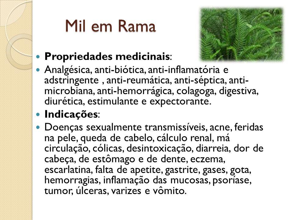 Mil em Rama Propriedades medicinais: