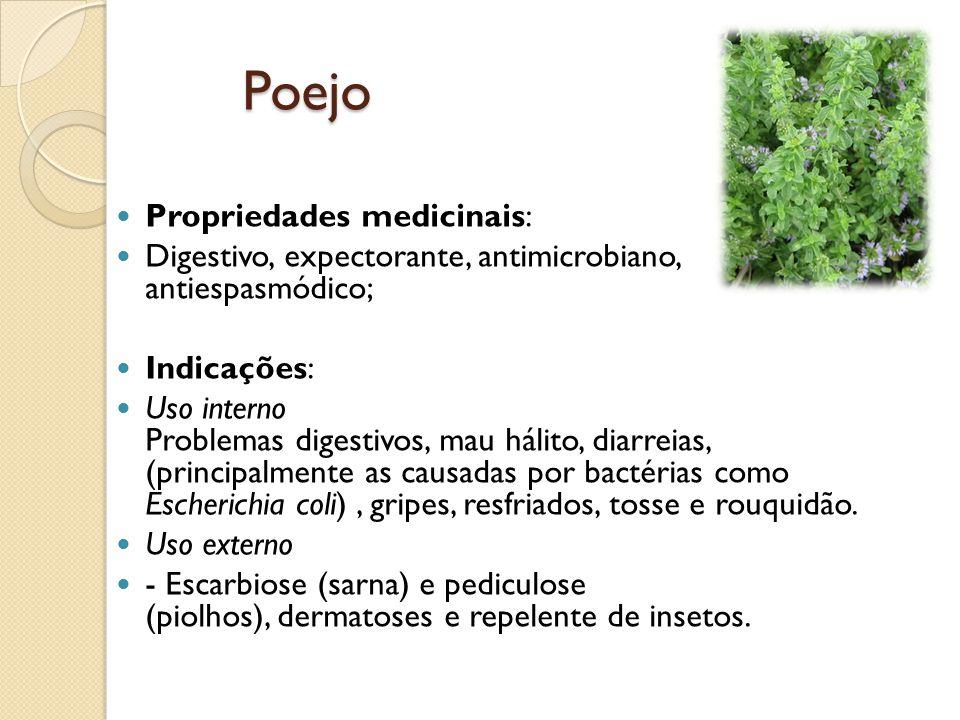 Poejo Propriedades medicinais: