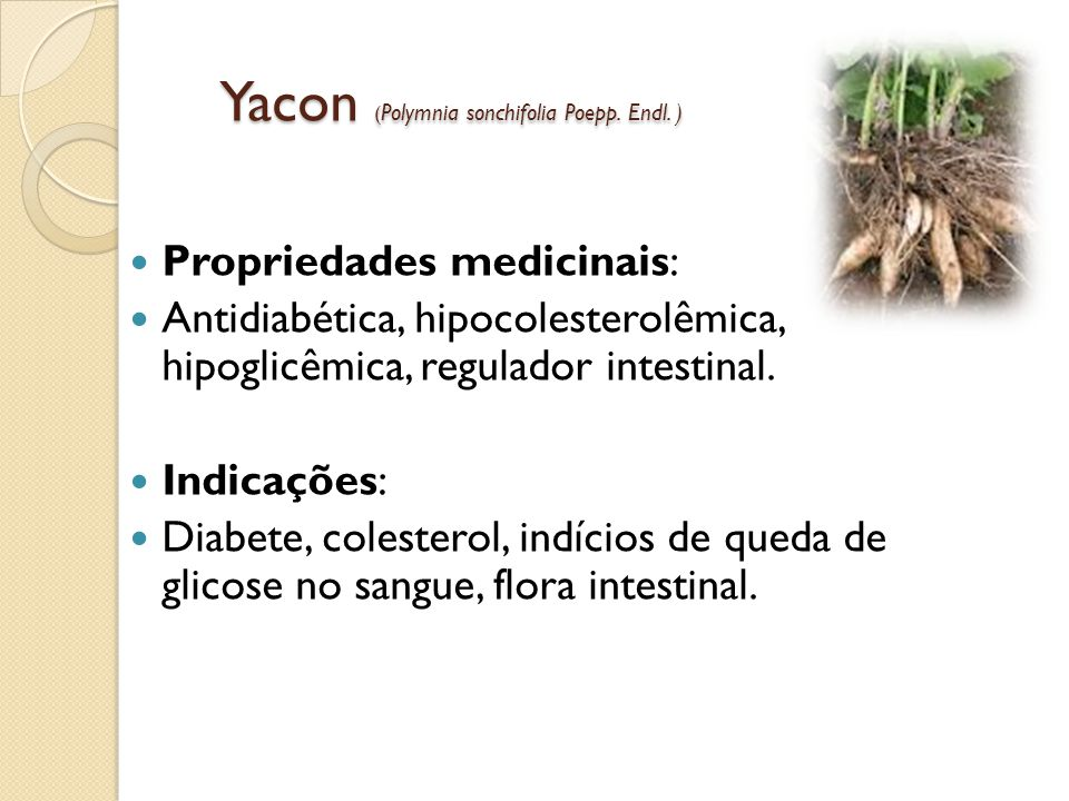 Yacon (Polymnia sonchifolia Poepp. Endl. )