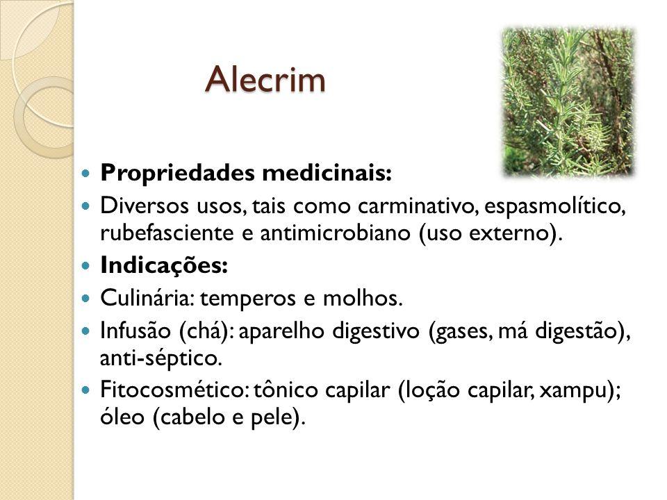 Alecrim Propriedades medicinais: