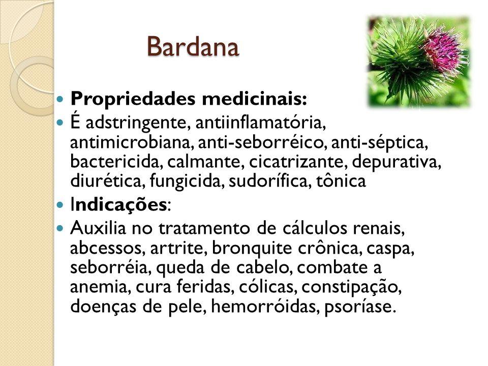 Bardana Propriedades medicinais:
