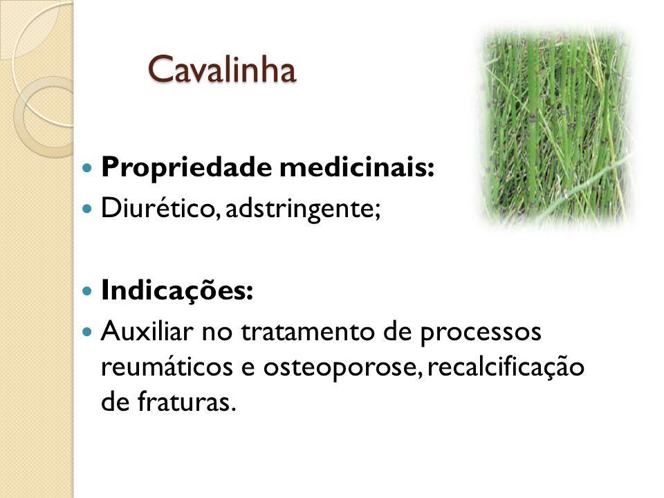 Cavalinha Propriedade medicinais: Diurético, adstringente; Indicações:
