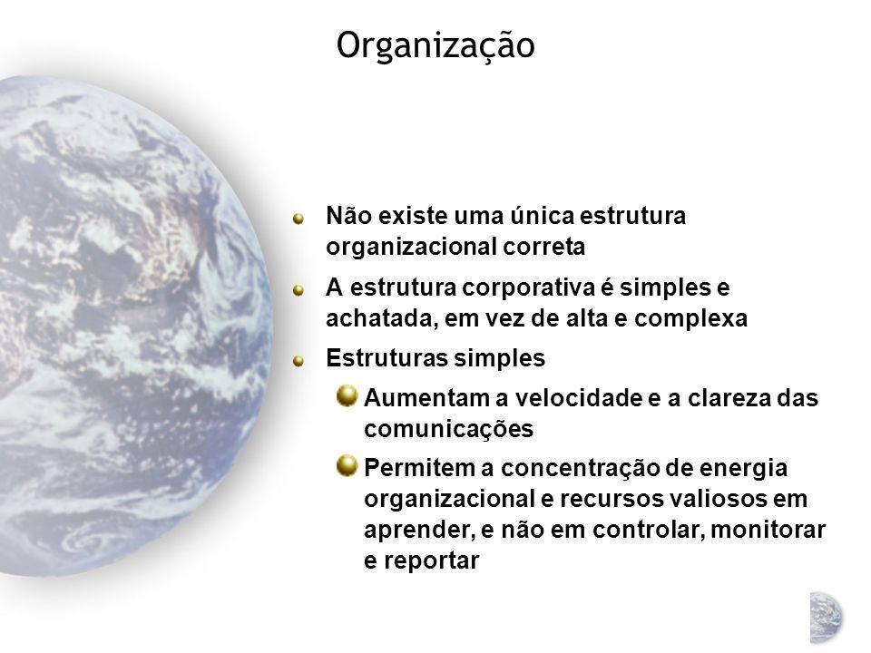 Organização Não existe uma única estrutura organizacional correta