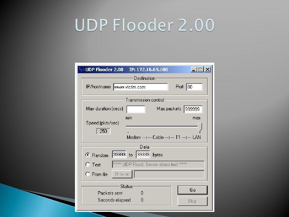 UDP Flooder 2.00