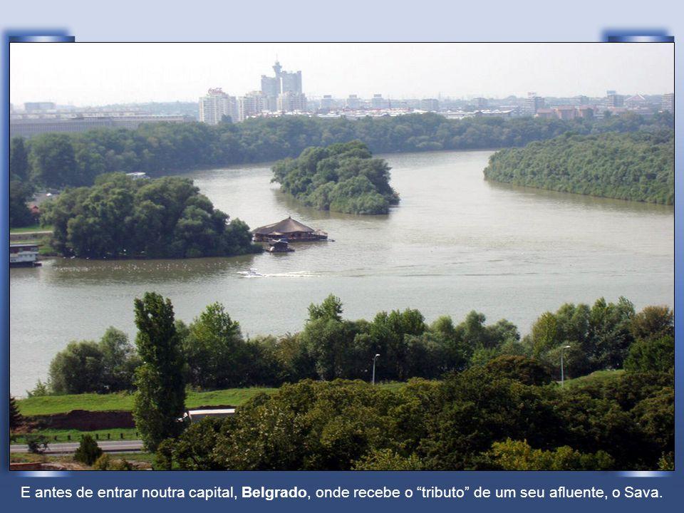 E antes de entrar noutra capital, Belgrado, onde recebe o tributo de um seu afluente, o Sava.