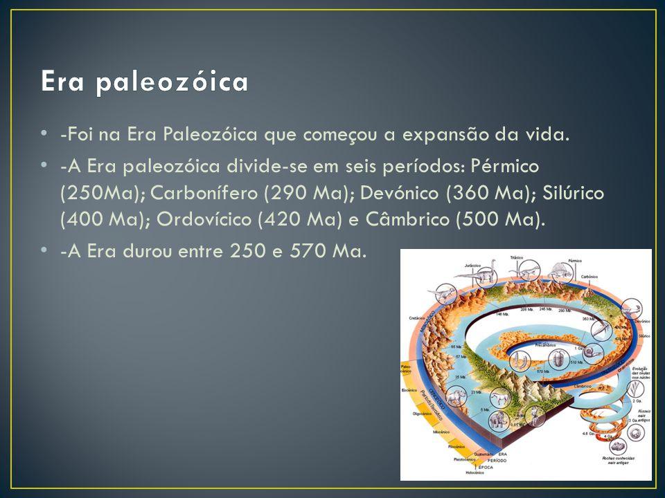 Era paleozóica -Foi na Era Paleozóica que começou a expansão da vida.
