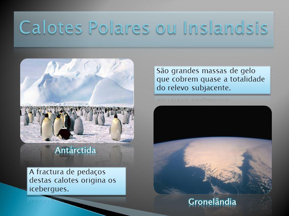 Calotes Polares ou Inslandsis