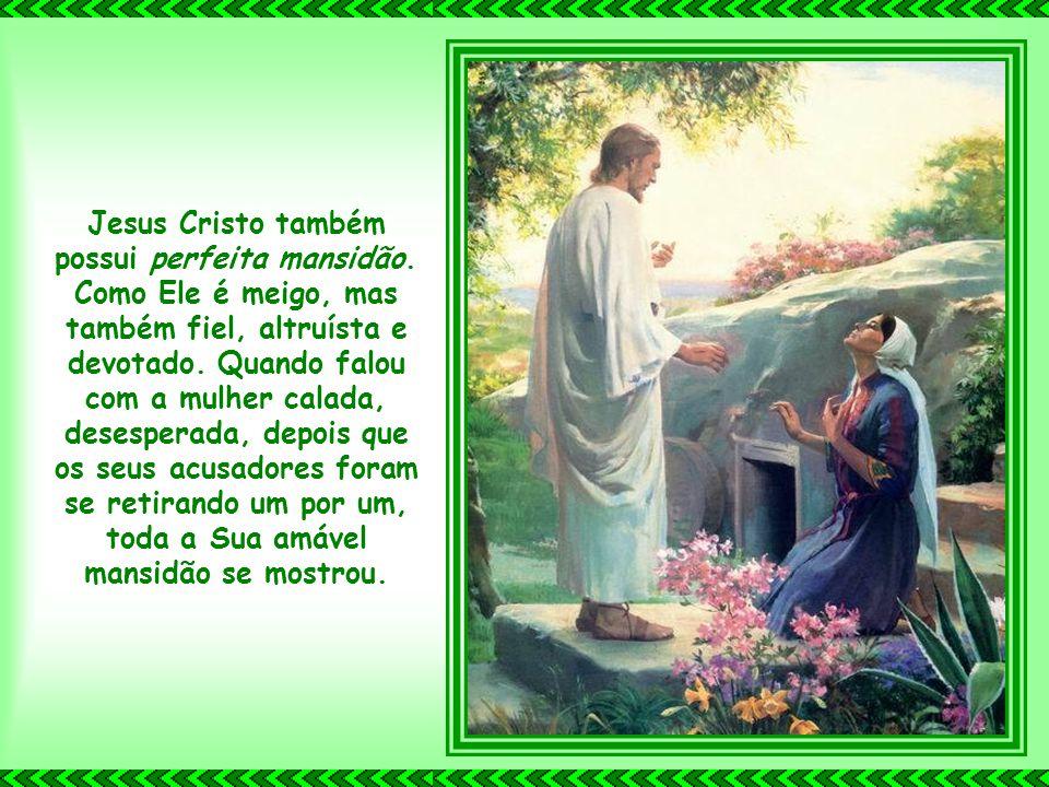 Jesus Cristo também possui perfeita mansidão