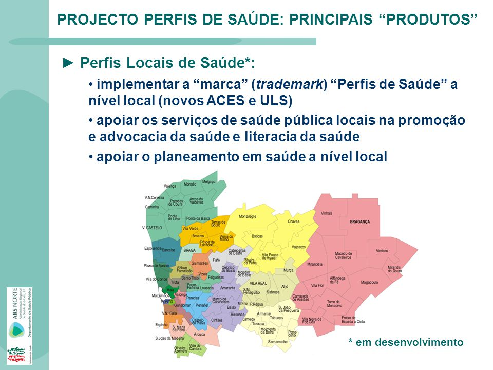 PROJECTO PERFIS DE SAÚDE: PRINCIPAIS PRODUTOS