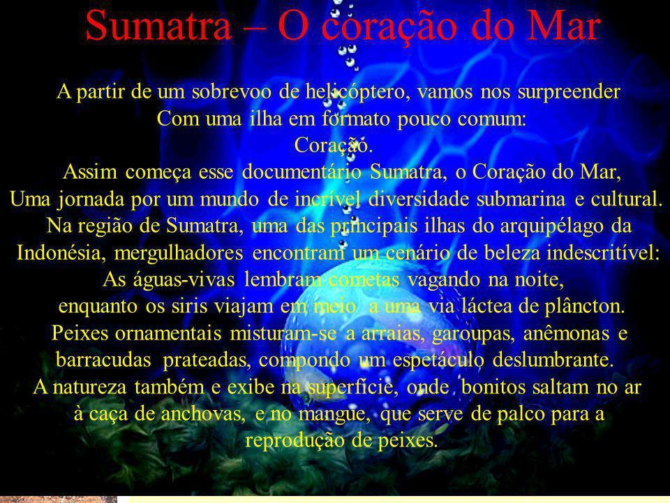 Sumatra – O coração do Mar