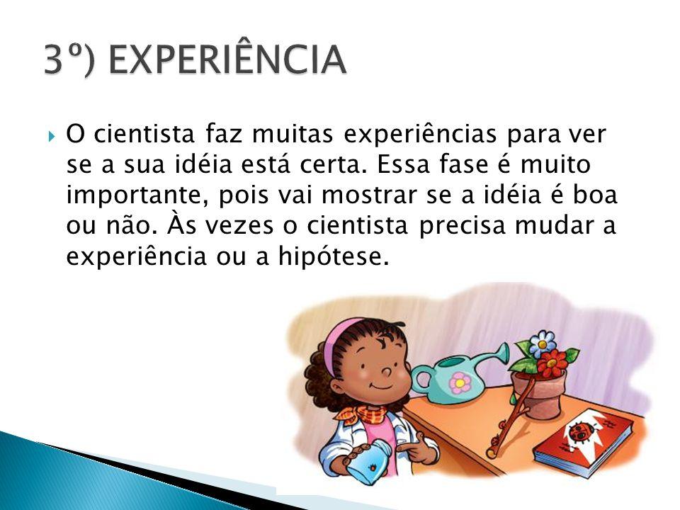 3º) EXPERIÊNCIA