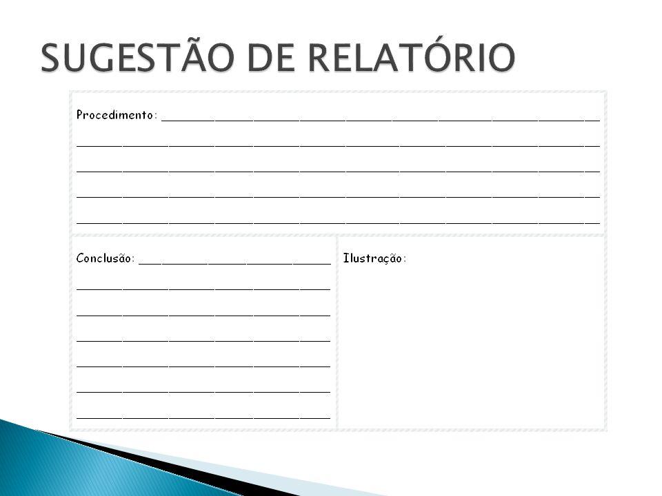SUGESTÃO DE RELATÓRIO