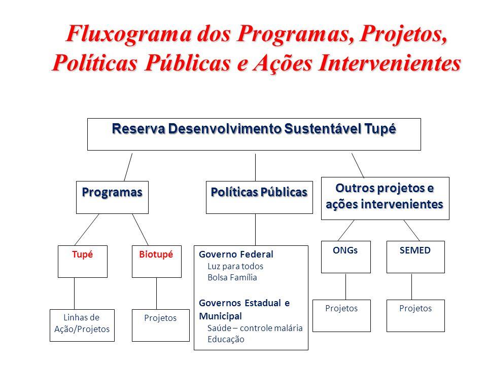 Fluxograma dos Programas, Projetos, Políticas Públicas e Ações Intervenientes