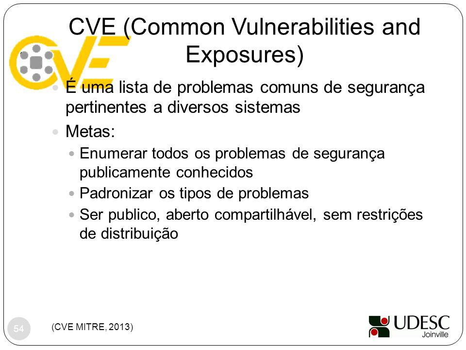 CVE (Common Vulnerabilities and Exposures)