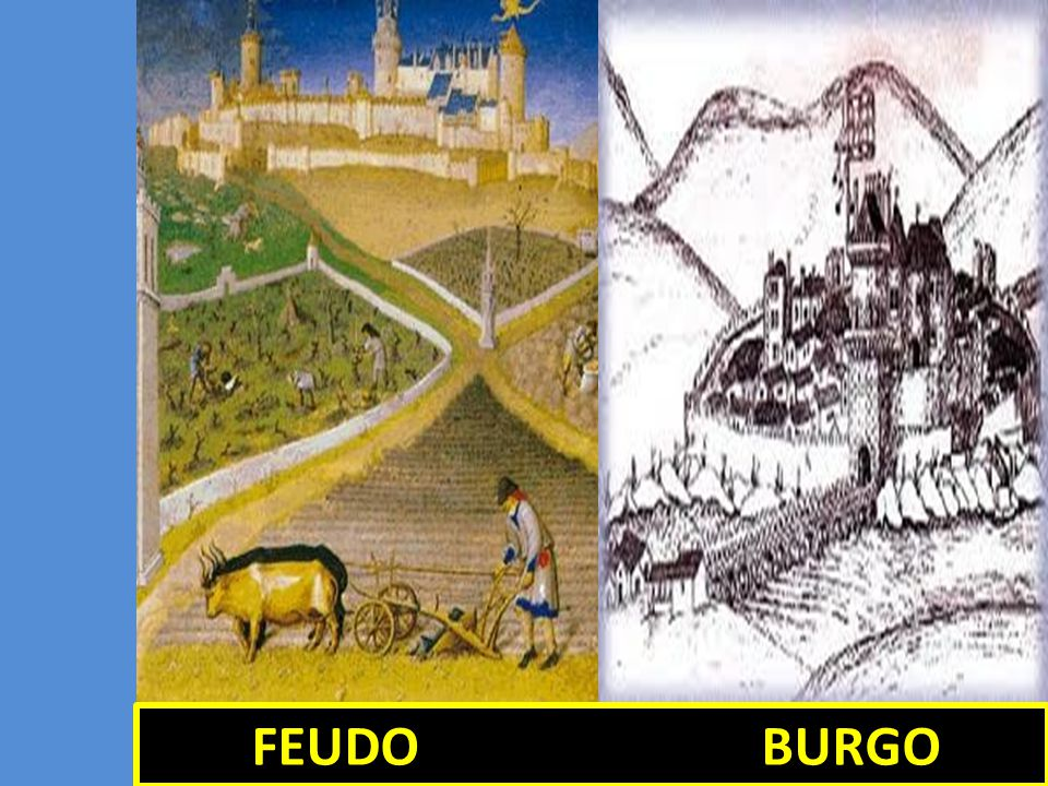 FEUDO BURGO