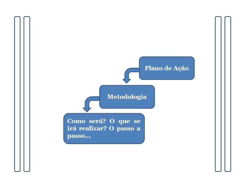Plano de Ação Metodologia Como será O que se irá realizar O passo a passo...