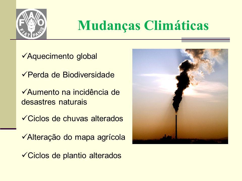 Mudanças Climáticas Aquecimento global Perda de Biodiversidade