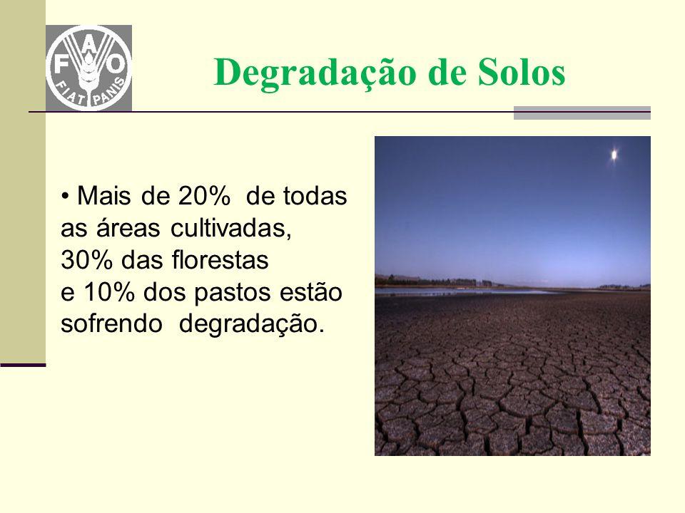 Degradação de Solos Mais de 20% de todas as áreas cultivadas, 30% das florestas.
