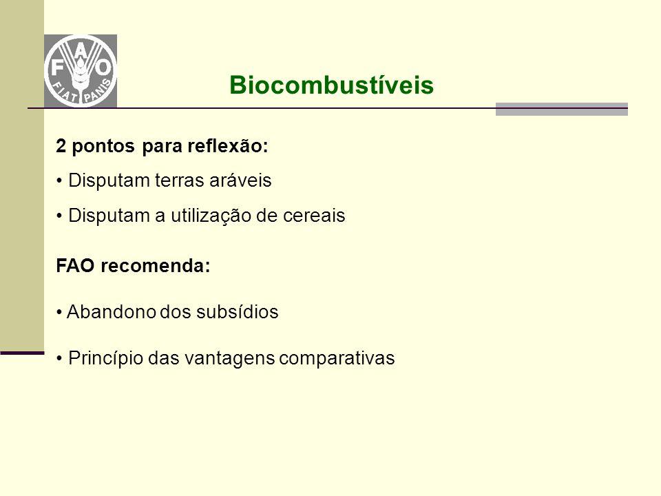 Biocombustíveis 2 pontos para reflexão: Disputam terras aráveis