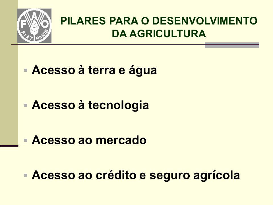 PILARES PARA O DESENVOLVIMENTO DA AGRICULTURA