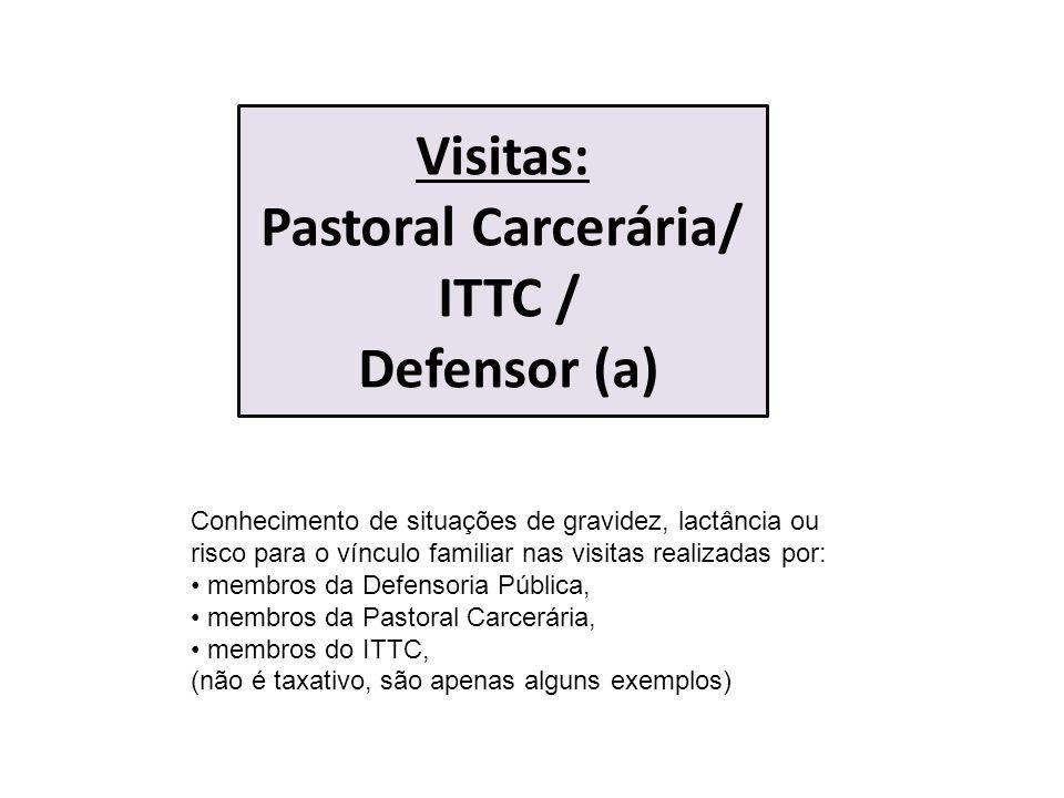 Visitas: Pastoral Carcerária/ ITTC / Defensor (a)