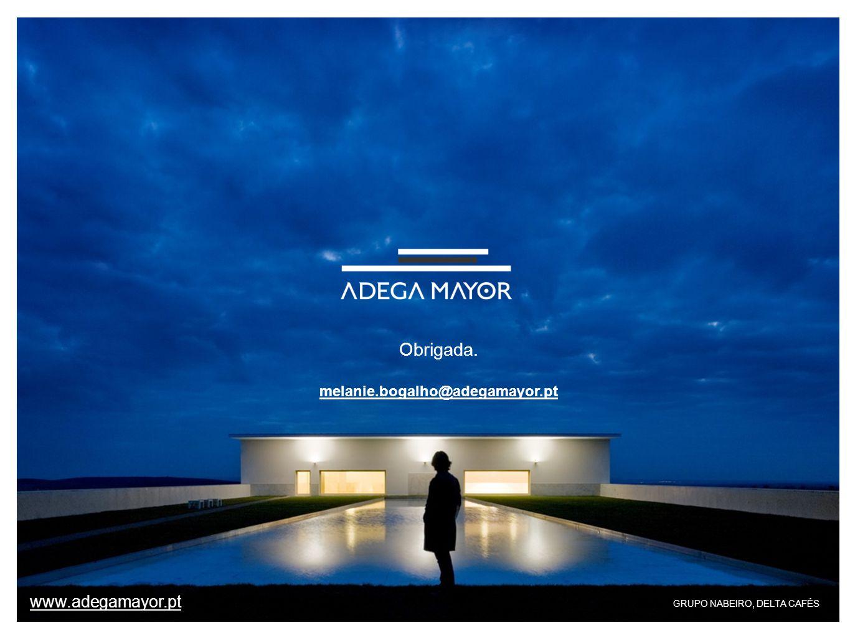 Obrigada. www.adegamayor.pt melanie.bogalho@adegamayor.pt