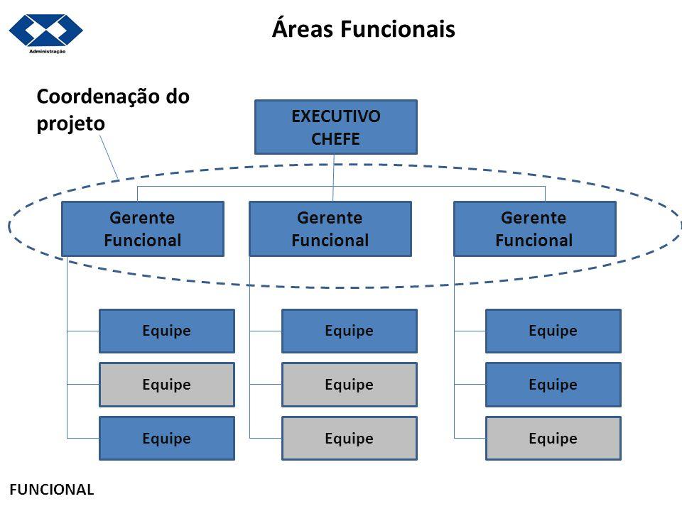 Áreas Funcionais Coordenação do projeto EXECUTIVO CHEFE Gerente