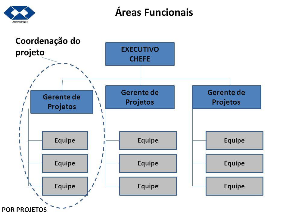 Áreas Funcionais Coordenação do projeto EXECUTIVO CHEFE Gerente de