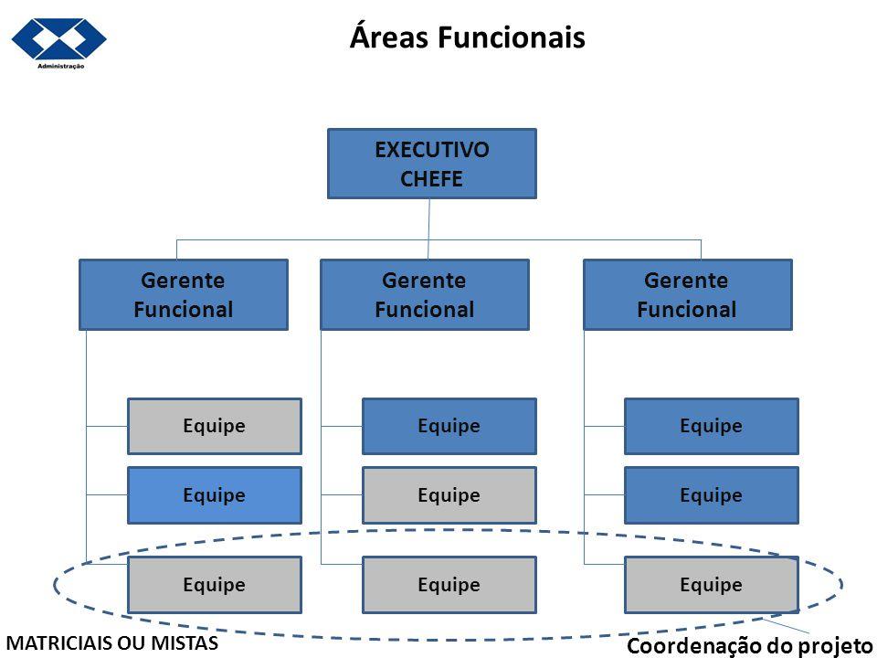 Áreas Funcionais EXECUTIVO CHEFE Gerente Funcional Gerente Funcional
