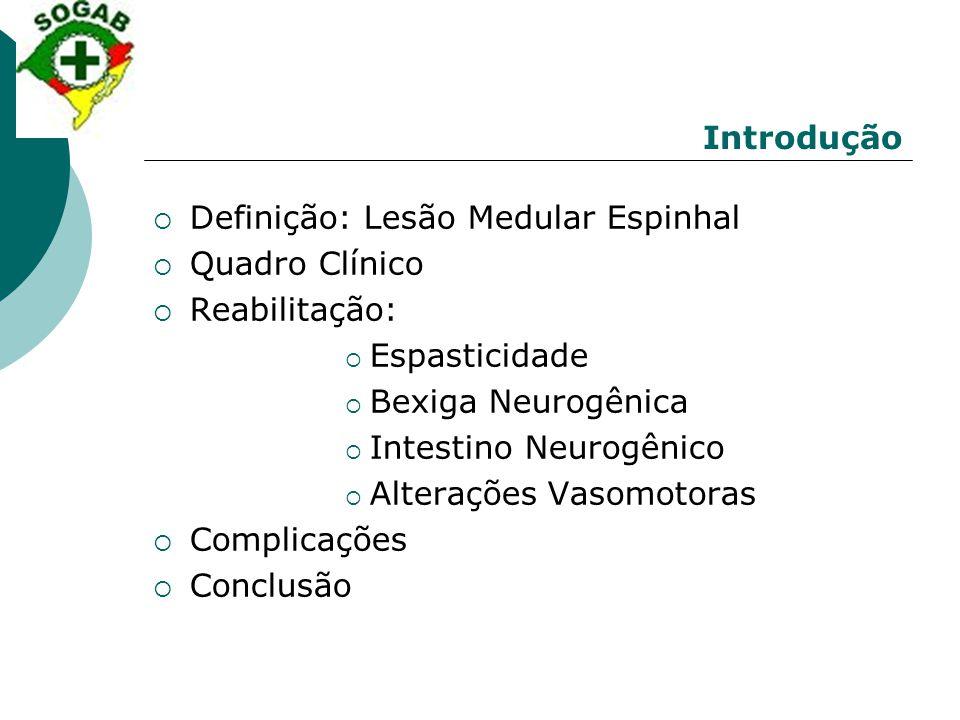 Introdução Definição: Lesão Medular Espinhal. Quadro Clínico. Reabilitação: Espasticidade. Bexiga Neurogênica.