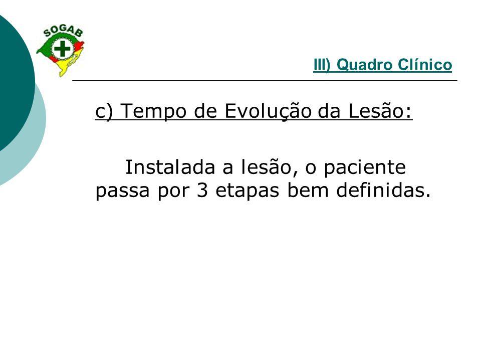 c) Tempo de Evolução da Lesão: