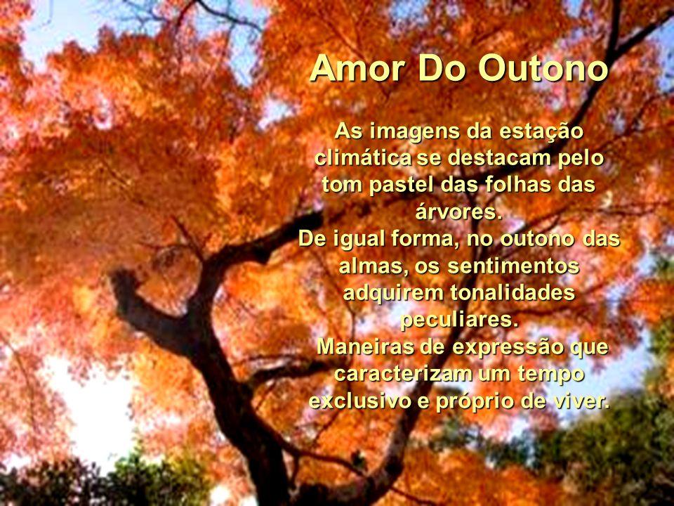 Amor Do Outono As imagens da estação climática se destacam pelo tom pastel das folhas das árvores.