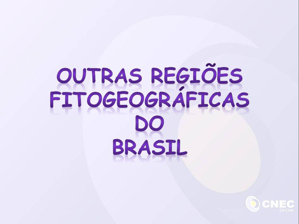 outras regiões fitogeográficas do brasil