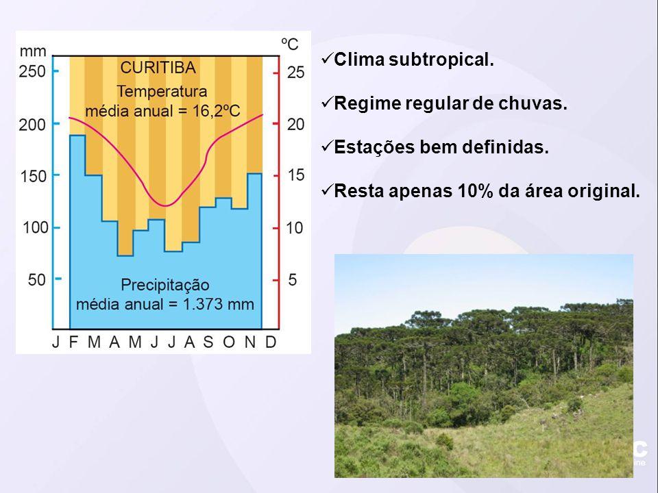 Clima subtropical. Regime regular de chuvas. Estações bem definidas.