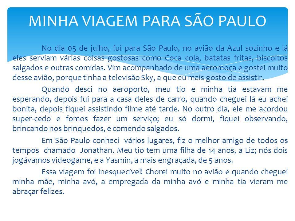 MINHA VIAGEM PARA SÃO PAULO