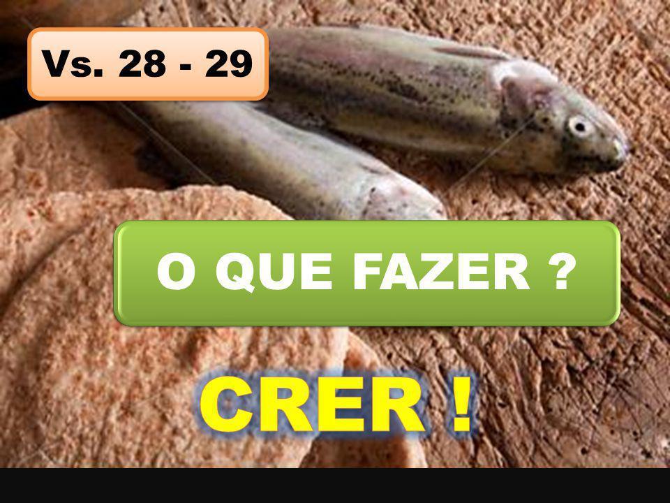Vs. 28 - 29 O QUE FAZER CRER !