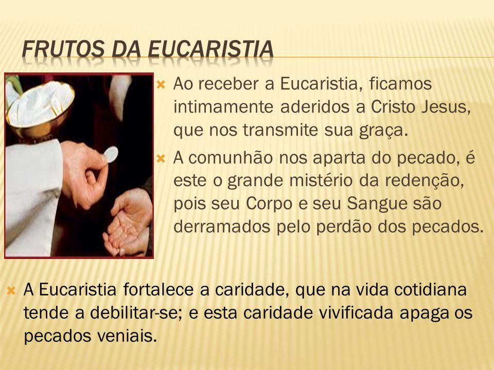 Frutos da eucaristia Ao receber a Eucaristia, ficamos intimamente aderidos a Cristo Jesus, que nos transmite sua graça.