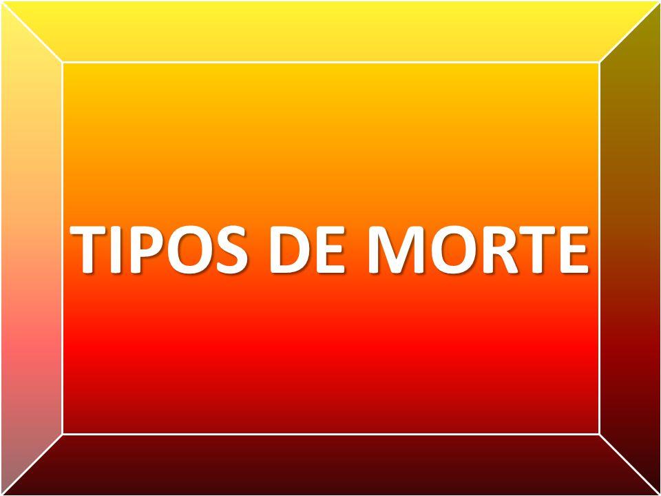 TIPOS DE MORTE
