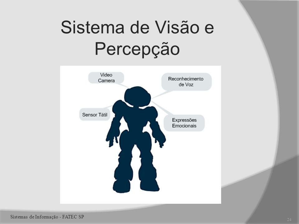 Sistema de Visão e Percepção