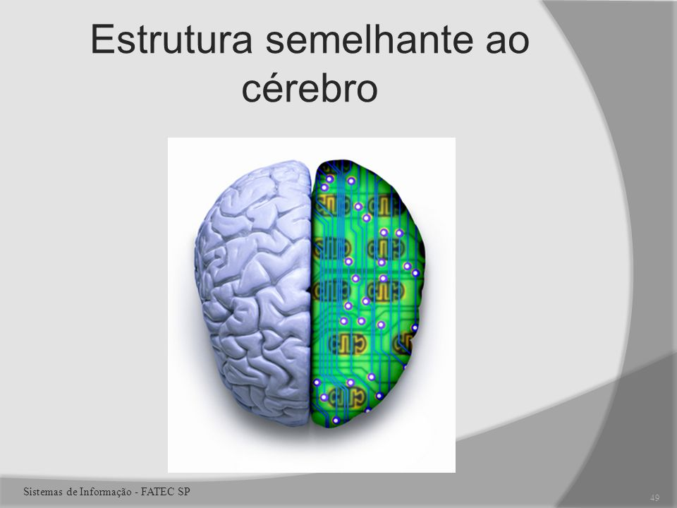 Estrutura semelhante ao cérebro